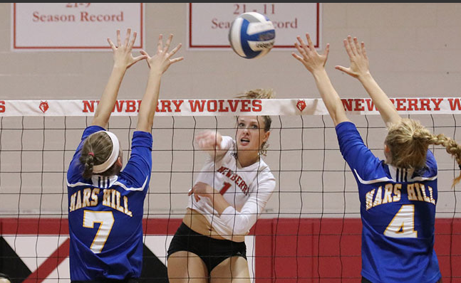 Volleyball Prospect and Skills Camp