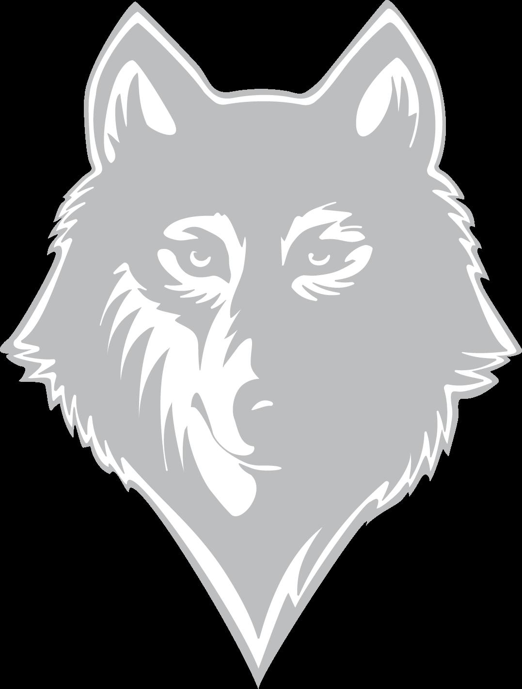 Gray wolf sketch